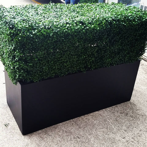 PORTABLE BOXWOOD HEDGE UV STABILISED 75cm High 100cm Long