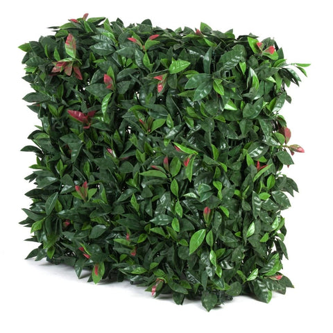 Portable Red Photinia Hedge - UV Stabilised (75cm x 75cm)