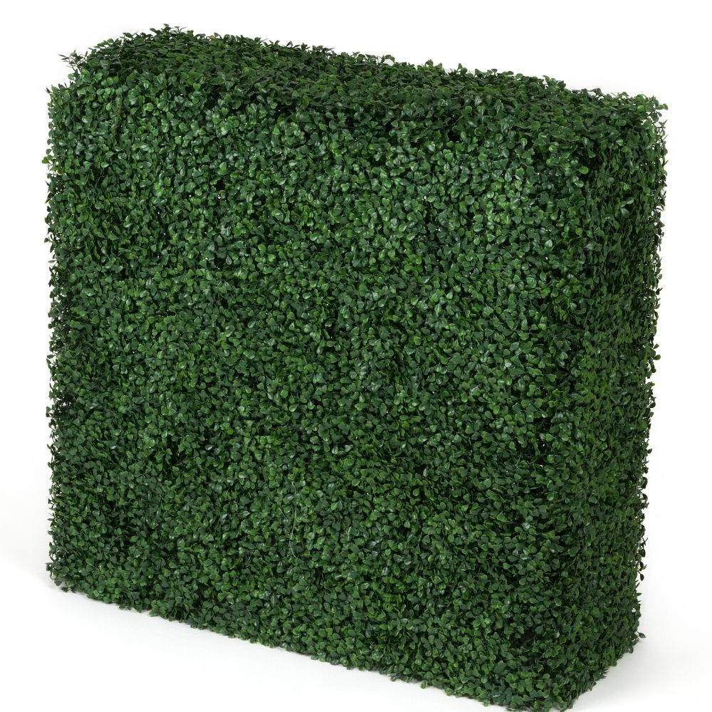 Portable Boxwood Hedge - UV Stabilised (75cm x 75cm)