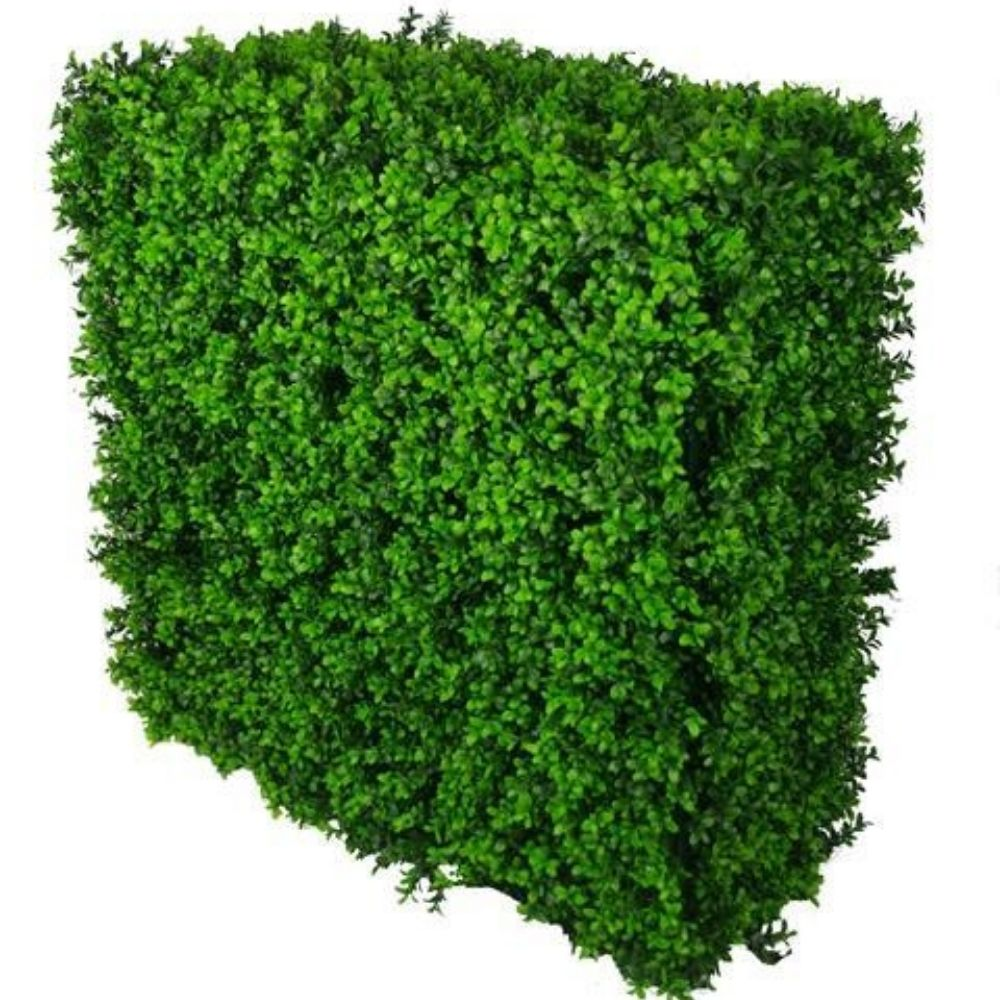 PORTABLE BUXUS HEDGE UV STABILISED 75cm x 75cm