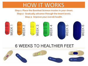 ONE PAIR FULL LENGTH 6 STEP INSOLES-SAVE 40%