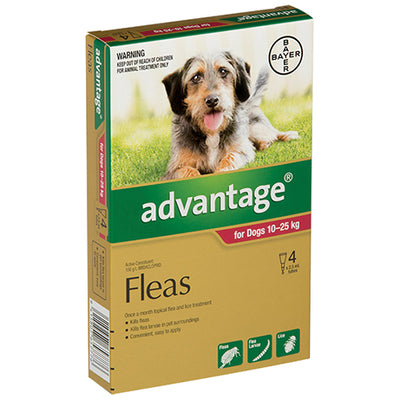 Advantage for Large Dogs 10-25kgs