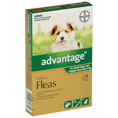 Advantage For Small Dogs and Puppies 4 Pack Flea & Worm