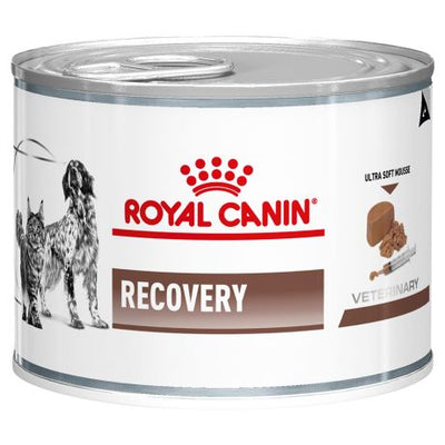 Royal Canin Cat & Dog Recovery 195g