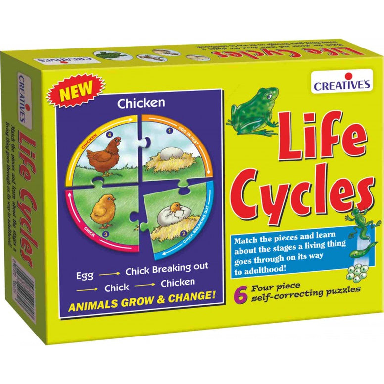 Life Cycles Educational Puzzle - Creatives