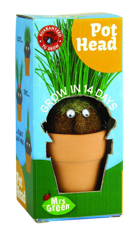 Pot Head - Magic Growing Plant