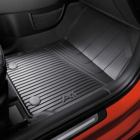 Rubber floor mats. Rear