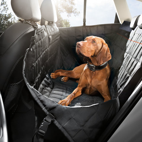 Rear seat protective cover