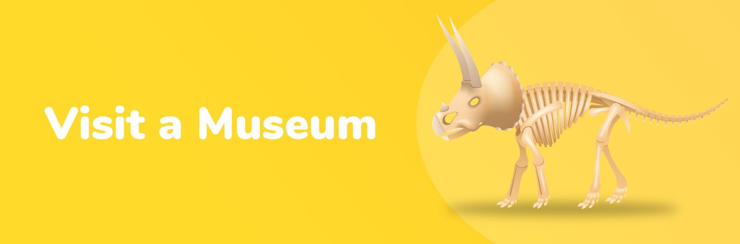 visit museum with kids