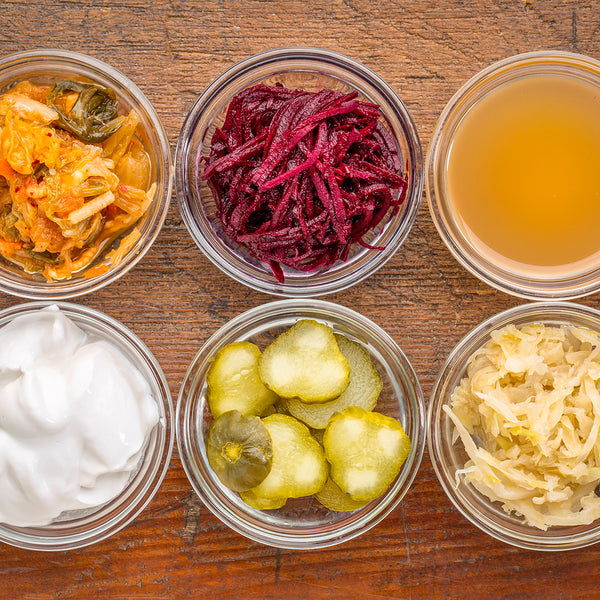 Mind-Gut Wellness and Fermentation Masterclass