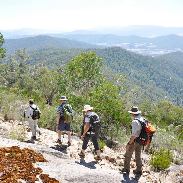 Mount Buffalo hike and al fresco lunch