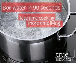 True Induction TI-2BN Cooktop Counter Inset Electric Double Burner Vertical Orientation 1800W