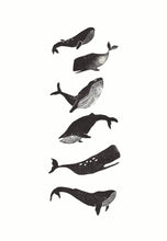 Whales Handprinted Illustration