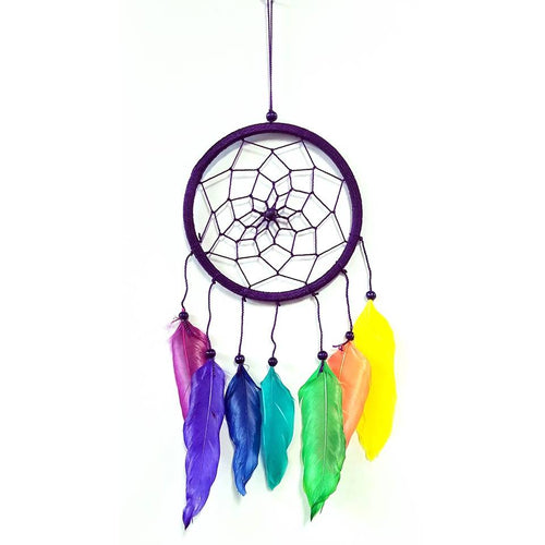 Dream Catcher With Multi Color Feathers