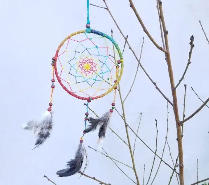 Dream Catcher Multi Colored With Feathers