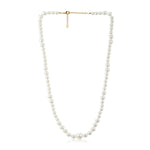 Single Line White Pearl Necklace