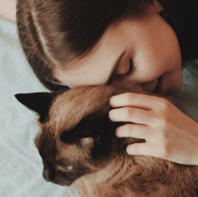 Celebrate being a crazy cat lady in 10 completely sane ways