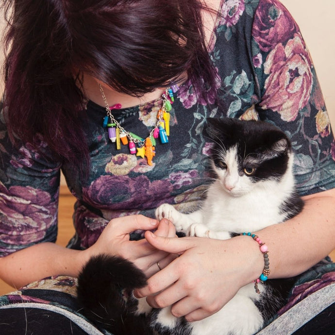 10 Things Every Cat Parent Can Relate To...