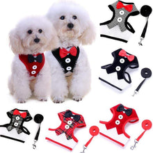 Load image into Gallery viewer, Cat Dog Vest Harness Bow Tie Suit Tuxedo Jacket Leash Set Small Animal Black