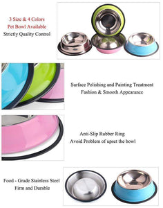 Colorful Stainless Steel Dish Feeder Blue