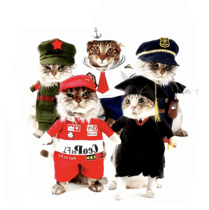 Funny Cat Clothes Pirate Suit Cloth Costume Halloween Party Kitty Suit