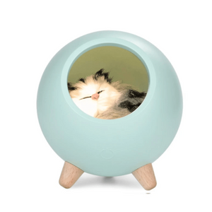 Sleeping Cat House Night Light LED Bluetooth Speaker Bedroom Home Décor Blue