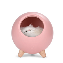 Load image into Gallery viewer, Sleeping Cat House Night Light LED Bluetooth Speaker Bedroom Home Décor Pink