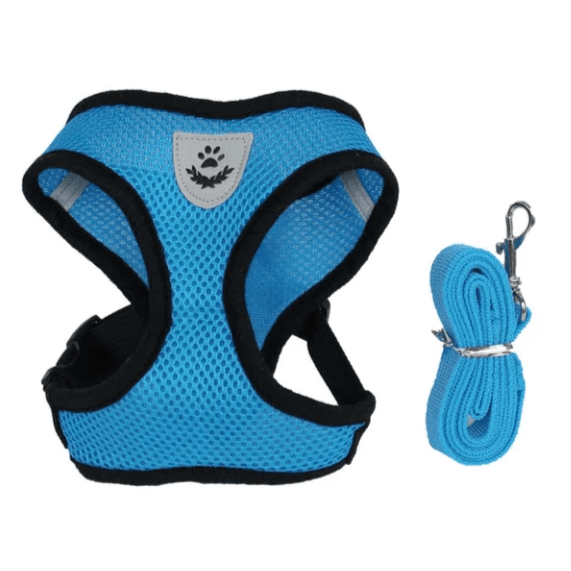 Cat Dog Pet Walking Harness With Leash Blue