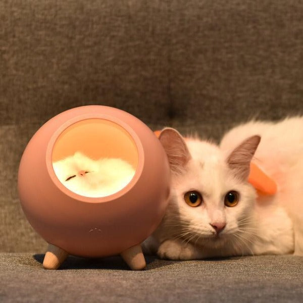Sleeping Cat House Night Light LED Bluetooth Speaker Bedroom Home Décor Pink