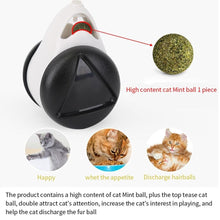 Load image into Gallery viewer, Smart Cat Catnip Toy with Wheels