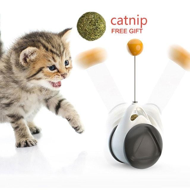 Smart Cat Catnip Toy with Wheels