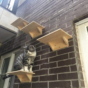 Wall-mounted cat jumping platform