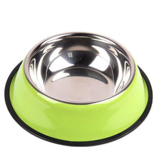 Load image into Gallery viewer, Colorful Stainless Steel Dish Feeder Green