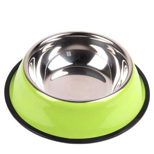 Colorful Stainless Steel Dish Feeder Green