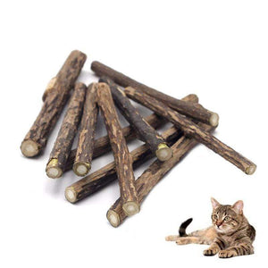 Catnip Cat Molar Toothpaste Sticks Cleaning Teeth Pet Supplies