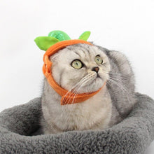 Load image into Gallery viewer,  Pumpkin Cat & Cape Costumes Cloak Halloween Poncho For Kittens Puppy