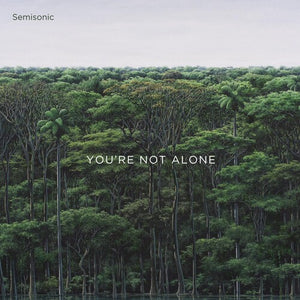 Semisonic - You're Not Alone - Blind Tiger Record Club