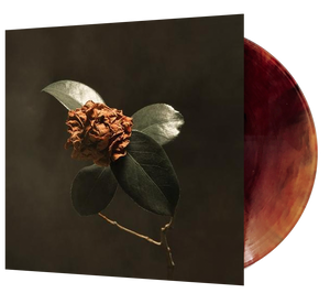 St. Paul & the Broken Bones - Young Sick Camellia (Ltd. Ed. Brown Vinyl) - Blind Tiger Record Club