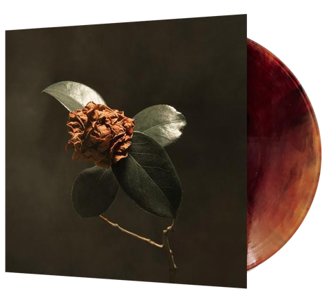 St. Paul & the Broken Bones - Young Sick Camellia (Ltd. Ed. Brown Vinyl) - MEMBER EXCLUSIVE