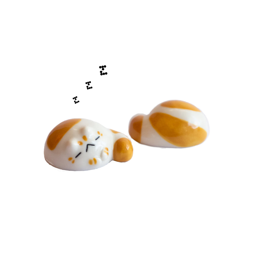 Sleeping Cheese Baby Tyrrano