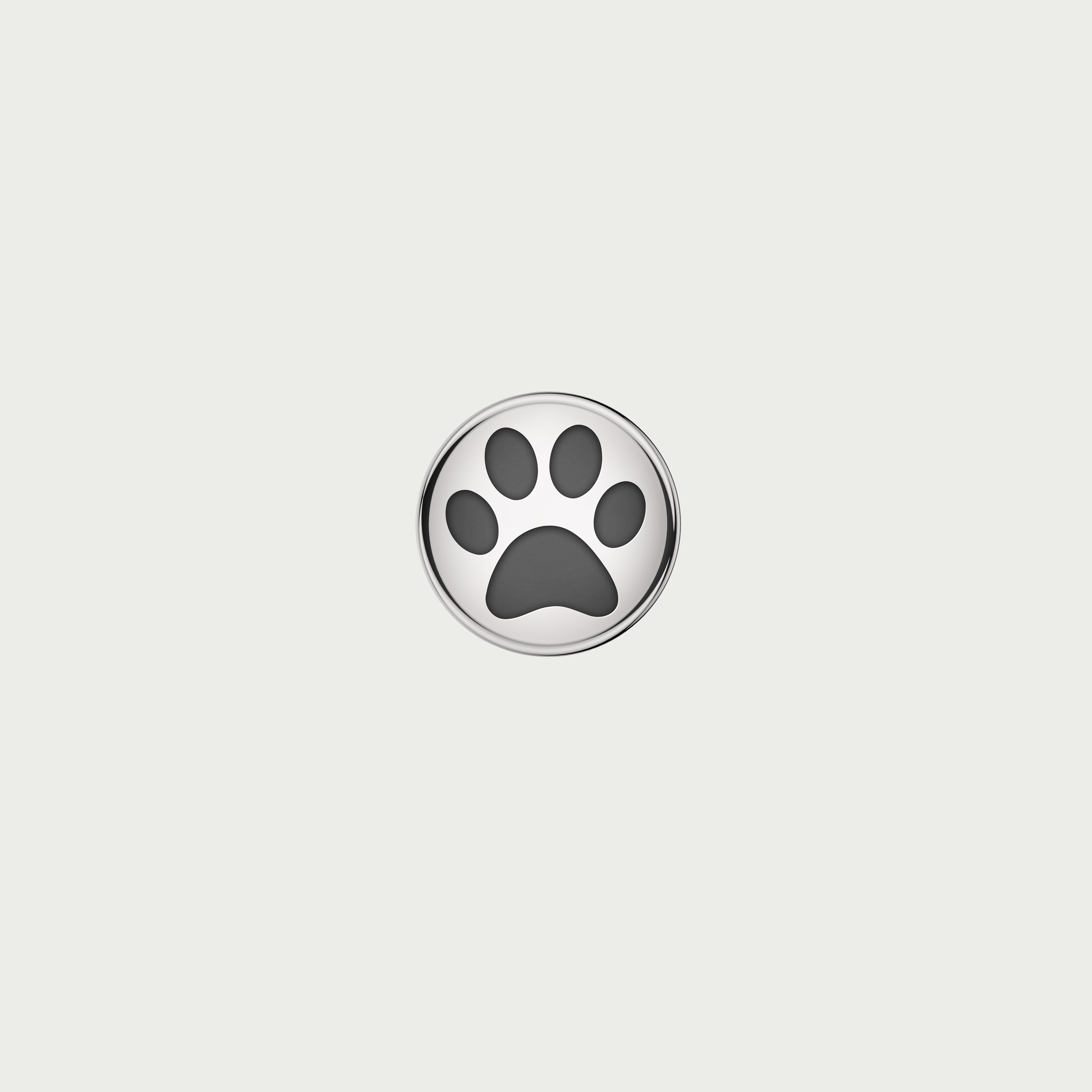 Charm DOG PAW - Steel