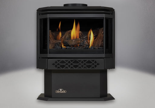 Napoleon Haliburton Direct Vent Gas Stove