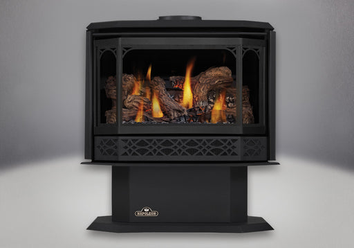 Napoleon Havelock Direct Vent Gas Stove