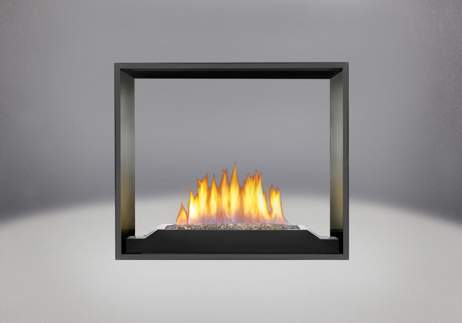 Napoleon High Definition 81 See Thru Direct Vent Fireplace