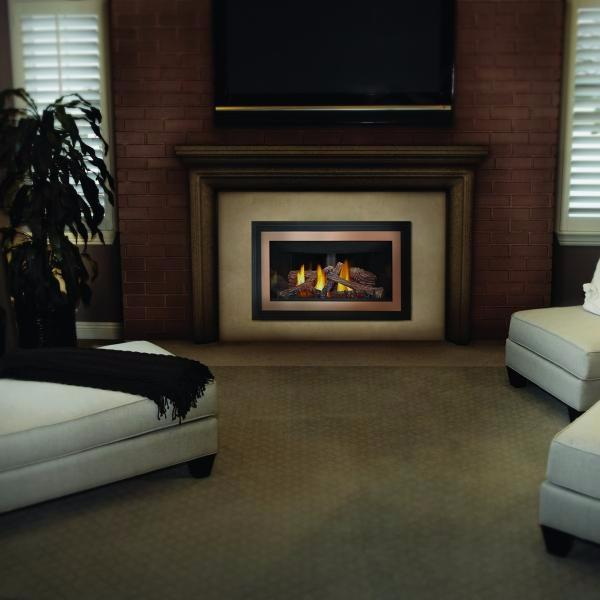 Napoleon Inspiration GDIZC-Direct Vent Inserts & Stoves-Napoleon-Hearth Stove & Patio