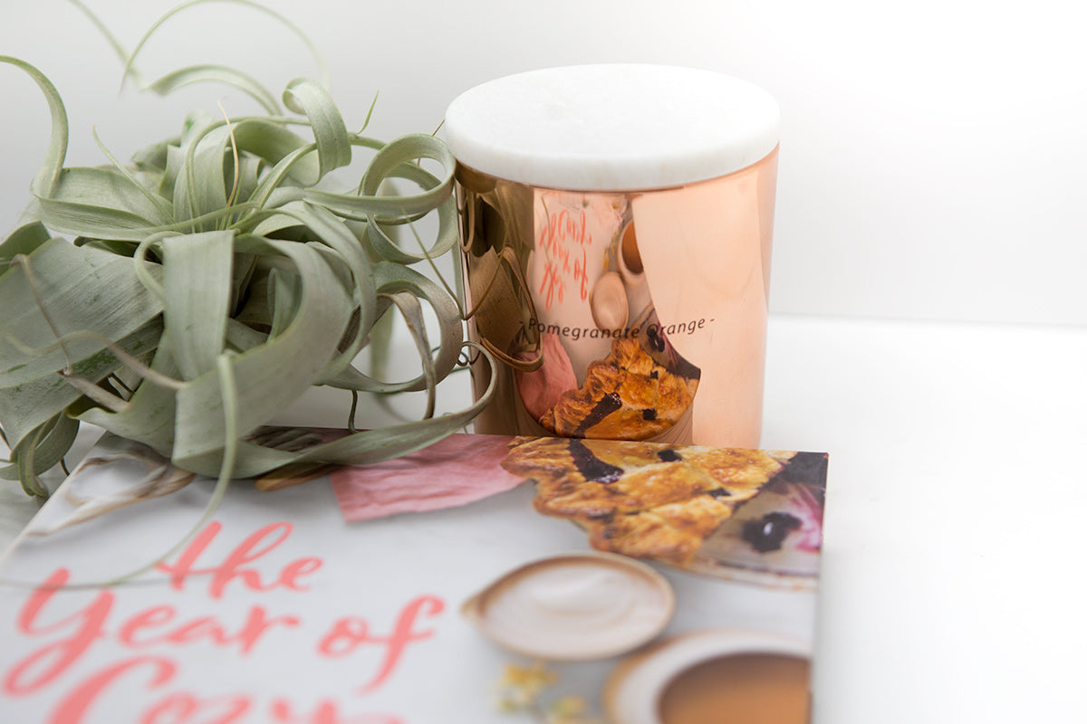 Plant, Book + Candle Curated Gift Package