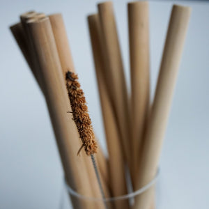 10 Bamboo Straws + 1 Brush Cleaner - Pack
