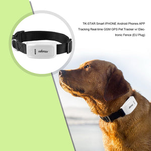 Pet GPS Tracker device locating dogs and animals - Shopper Needs