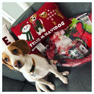 Doggy Christmas Hamper Deluxe