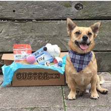 BusterBox Furry Friend Christmas Subscription - 6 Month